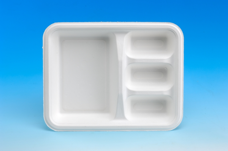 Dolor 4-Squared Meal Box
