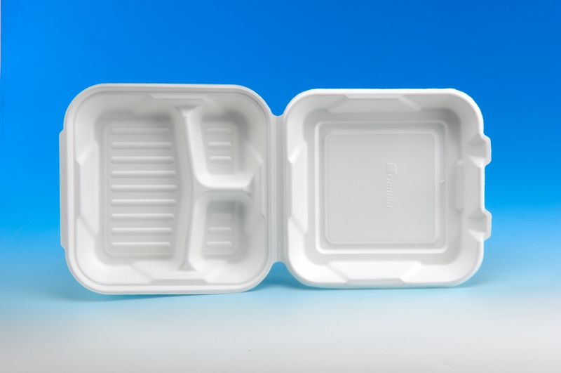 10 inch Lunch Meal Box