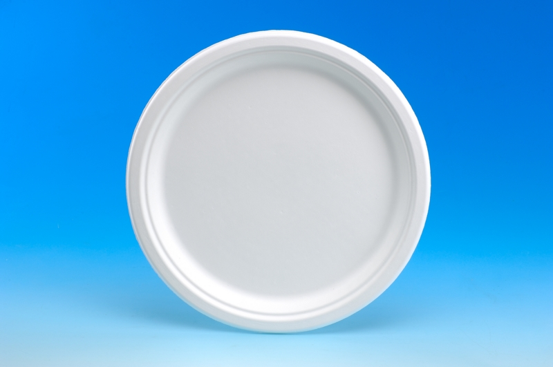 Paper Plate 10